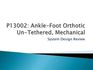 P13002: Ankle-Foot Orthotic Un-Tethered, Mechanical