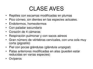 CLASE AVES