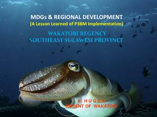 MDGs & REGIONAL DEVELOPMENT (A Lesson Learned of  P3BM  Implementation)