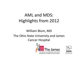 AML and MDS: Highlights from 2012
