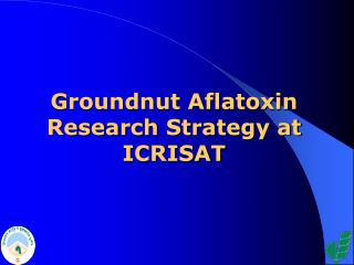 Groundnut Aflatoxin Research Strategy at ICRISAT