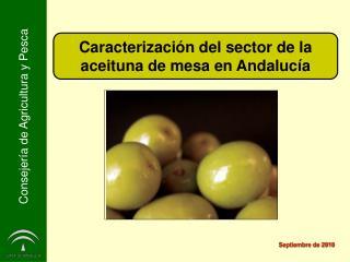 Caracterización del sector de la aceituna de mesa en Andalucía
