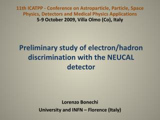 Preliminary study of electron/ hadron  discrimination with the NEUCAL detector