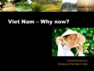 Viet Nam – Why now?