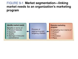 FIGURE 9-1  Market segmentation linking market needs to an organization s marketing program