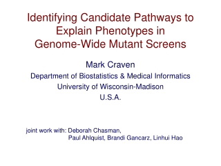 Identifying Candidate Pathways to Explain Phenotypes in Genome-Wide Mutant Screens