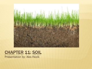 Chapter 11: Soil
