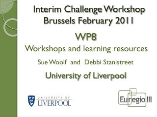 Interim Challenge Workshop  Brussels February 2011