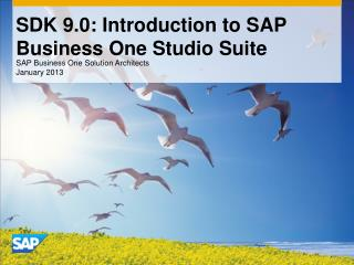 SDK 9.0: Introduction to SAP Business One Studio Suite