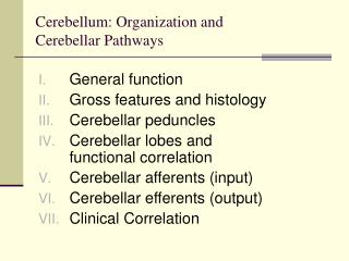 Cerebellum: Organization and  Cerebellar Pathways