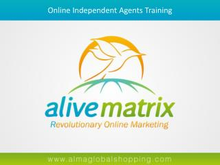 Online Independent Agents  Training