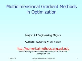 Multidimensional Gradient Methods in Optimization