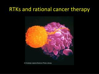 RTKs and rational cancer therapy