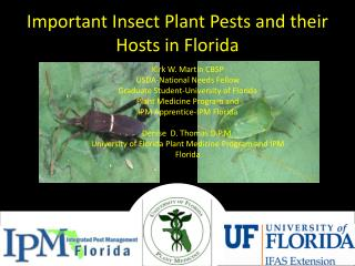 Important Insect Plant Pests and their Hosts in Florida