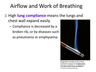 Airflow and Work of Breathing