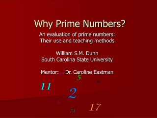 Why Prime Numbers?