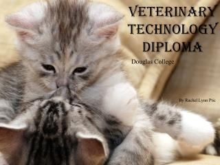 Veterinary  T echnology Diploma