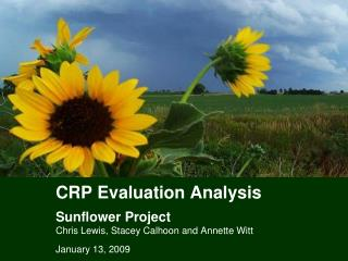 CRP Evaluation Analysis Sunflower Project Chris Lewis, Stacey Calhoon and Annette Witt