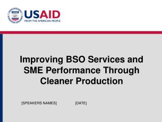 Improving BSO Services and SME Performance Through Cleaner Production