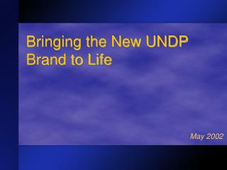 Bringing the New UNDP Brand to Life