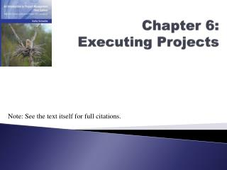 Chapter 6: Executing Projects