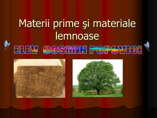 Materii prime şi materiale lemnoase