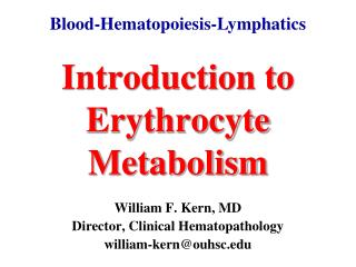 Introduction to Erythrocyte Metabolism