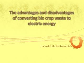 The advantages and disadvantages of converting bio crop waste to electric energy