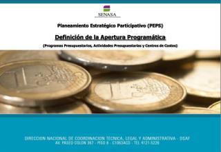 Planeamiento Estratégico Participativo (PEPS) Definición de la Apertura Programática
