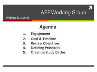 AEF Working Group