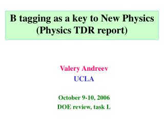 B tagging as a key to New Physics (Physics TDR report)