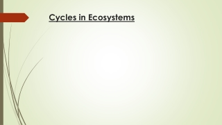 Cycles in Ecosystems