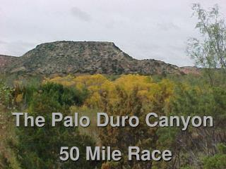 The Palo Duro Canyon  50 Mile Race