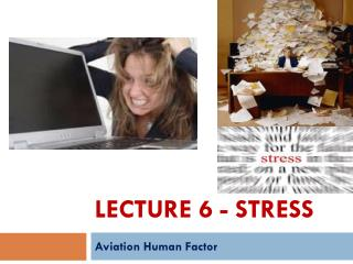 Lecture 6 - Stress