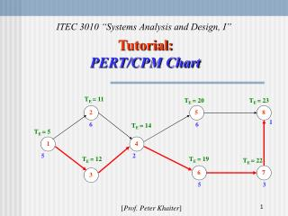 Tutorial: PERT/CPM Chart