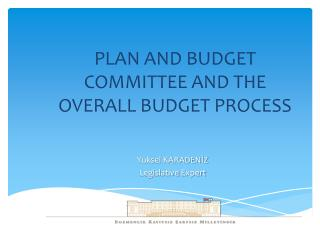 PLAN AND BUDGET COMMITTEE AND THE OVERALL BUDGET PROCESS