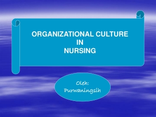 Nursing Innovation in the Work Environment Contributes to Excellence in Patient Care