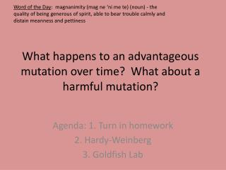 What happens to an advantageous mutation over time?  What about a harmful mutation?