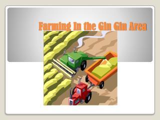 Farming In the Gin Gin Area