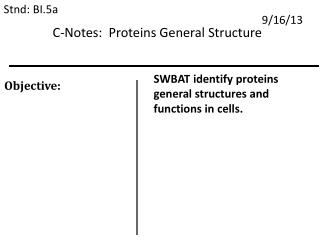 C-Notes:  Proteins General Structure