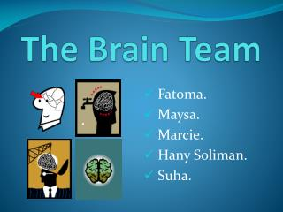 The Brain Team