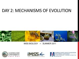 DAY 2: Mechanisms of evolution