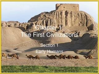 Chapter 1:  The First Civilizations