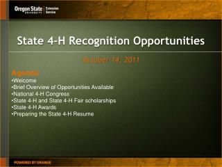 State 4-H Recognition Opportunities