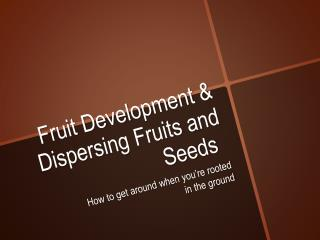 Fruit Development & Dispersing Fruits and Seeds