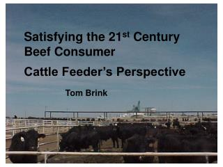 Satisfying the 21 st  Century   Beef Consumer   Cattle Feeder's Perspective Tom Brink