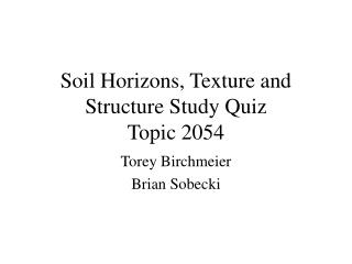 Soil Horizons, Texture and Structure Study Quiz Topic 2054
