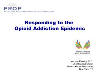 Responding to the  Opioid Addiction Epidemic