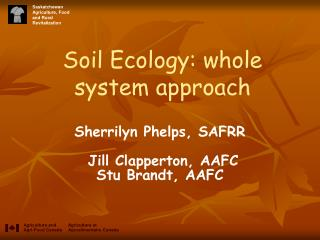 Soil Ecology: whole system approach