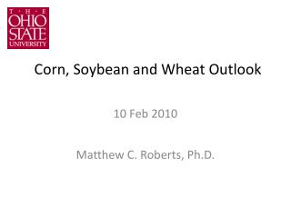 Corn, Soybean and Wheat Outlook